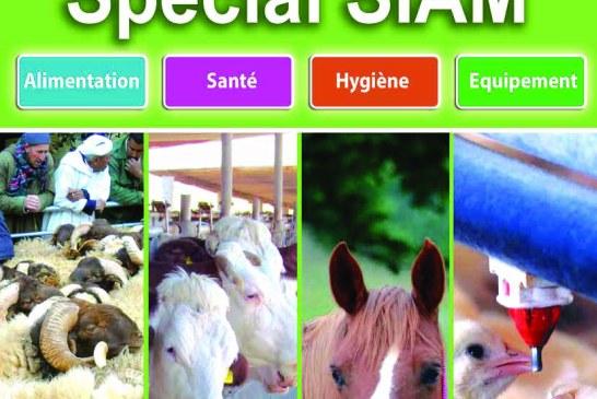 Agriculture du maghreb N° 85 Mai 2015
