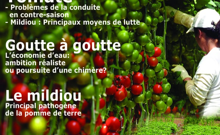 Agriculture du maghreb N° 91 Déc. 15/Jan. 16